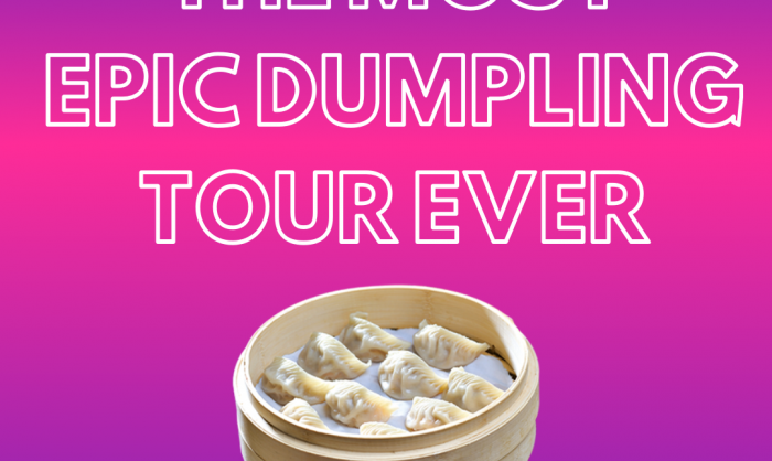 The Most Epic Dumpling Tour Ever